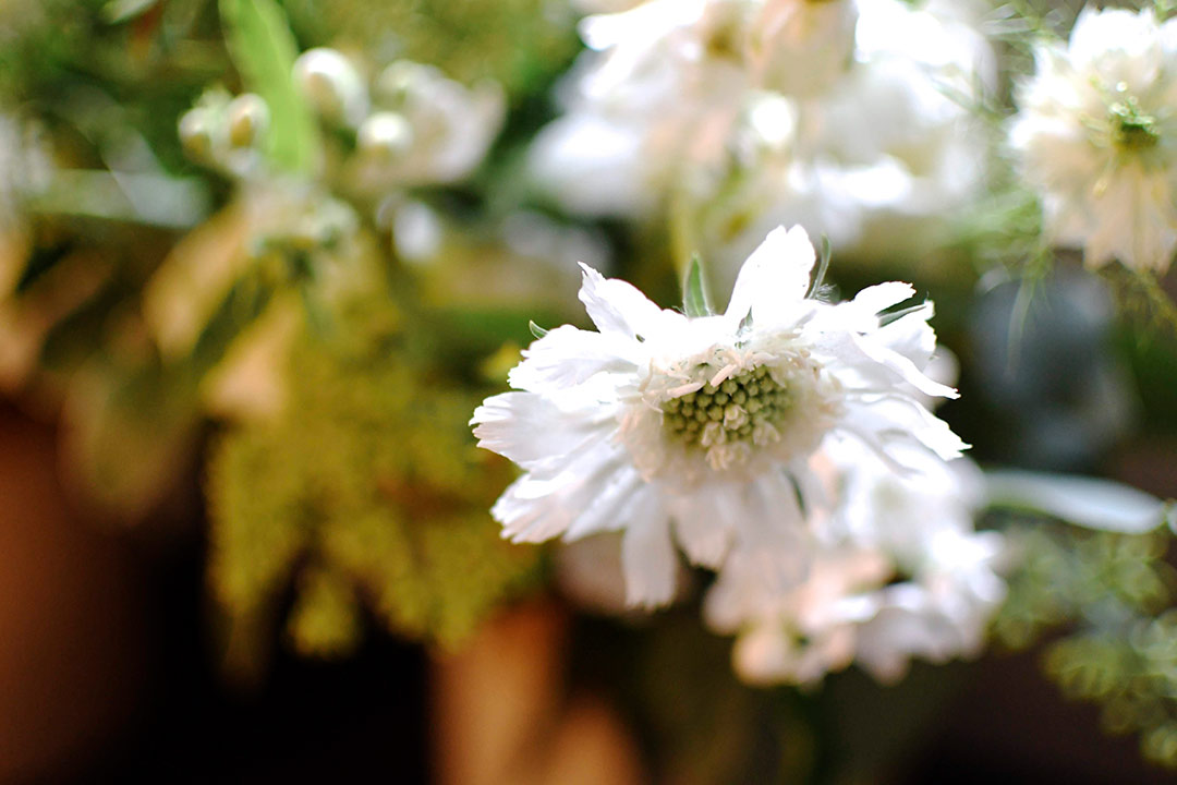 Close up of white wedding flowers
